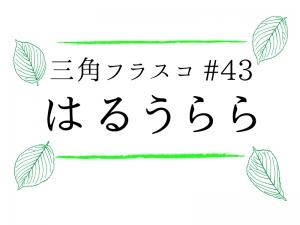 三角フラスコ#43『はるうらら』