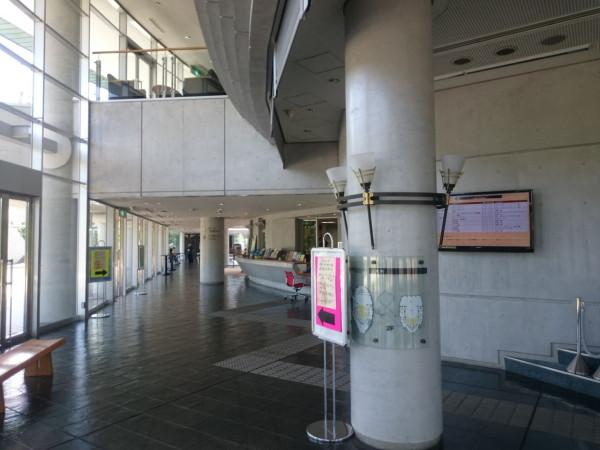 vn_ezuko_hiradoma_door